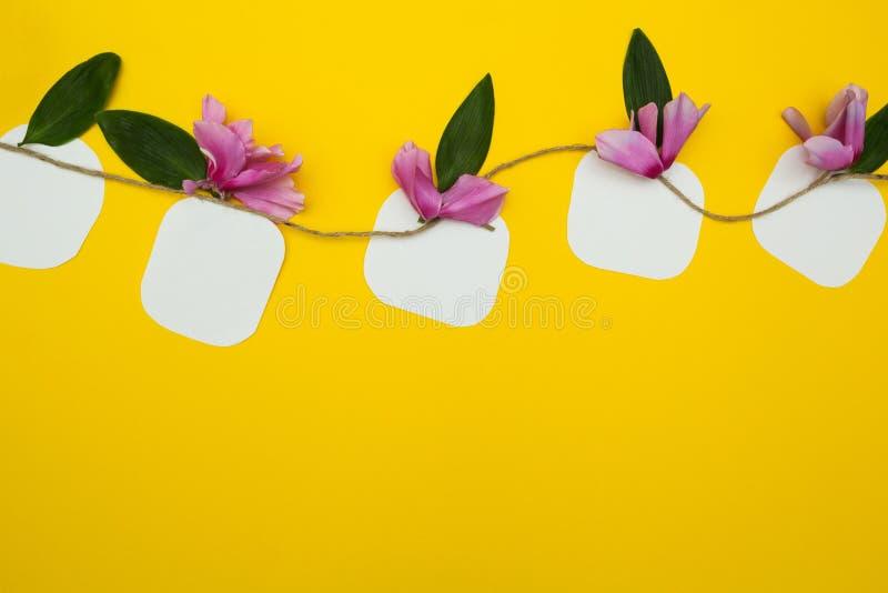 关于串的五笔记与在黄色背景的花,与文本的空间 库存图片