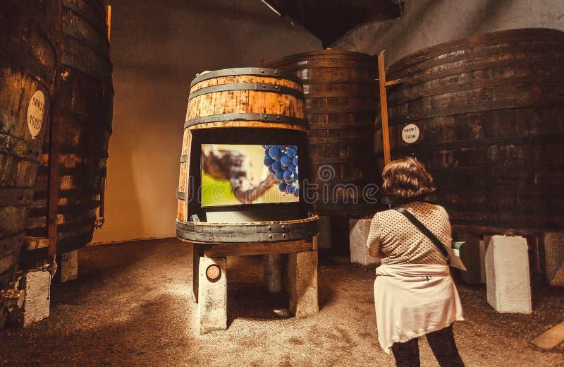 关于葡萄酒的女性旅游观看的录影故事在有木桶的老酿酒厂裁缝的里面 免版税图库摄影