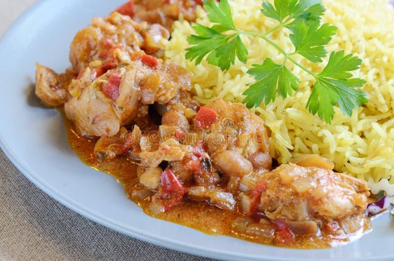 辣咖喱鸡肉和大米 免版税库存照片