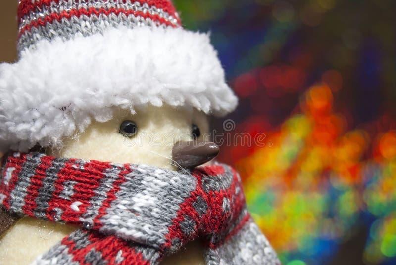 关闭与圣诞节围巾和盖帽的一只奶油色常设鸟有模糊和五颜六色的背景 库存图片