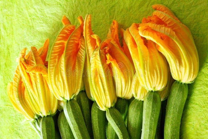 夏南瓜的花 免版税库存照片