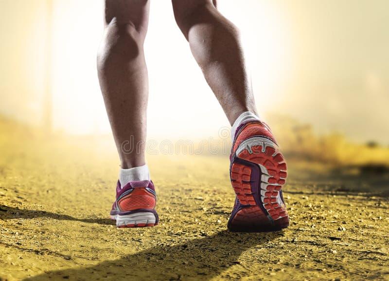 关闭与跑步在健身训练的体育妇女的跑鞋和女性强的运动腿的脚 免版税库存图片