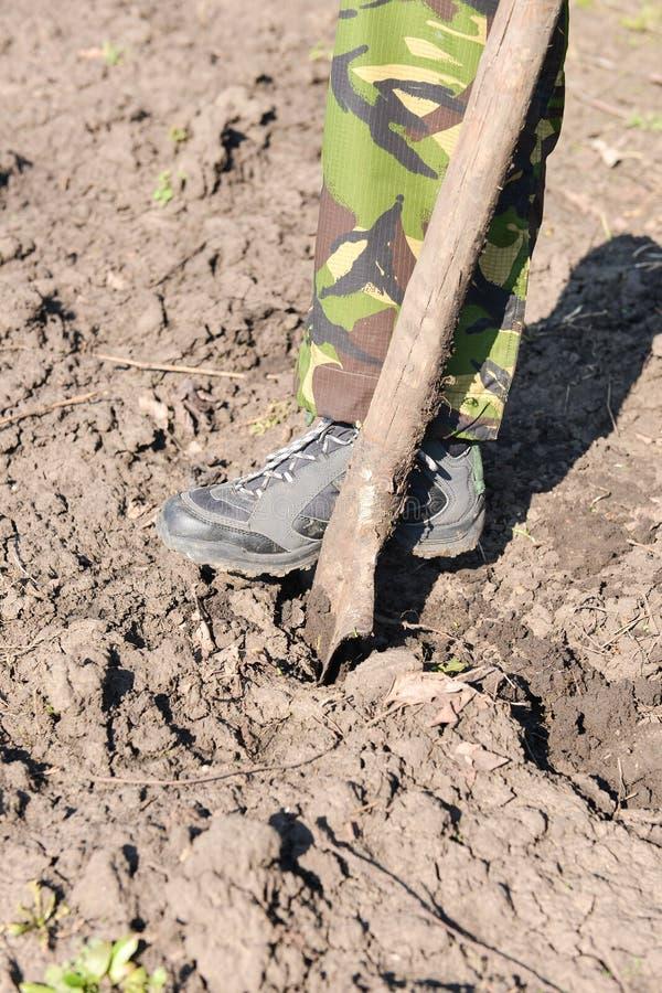 关闭与锹,准备的人开掘的春天土壤 免版税库存照片