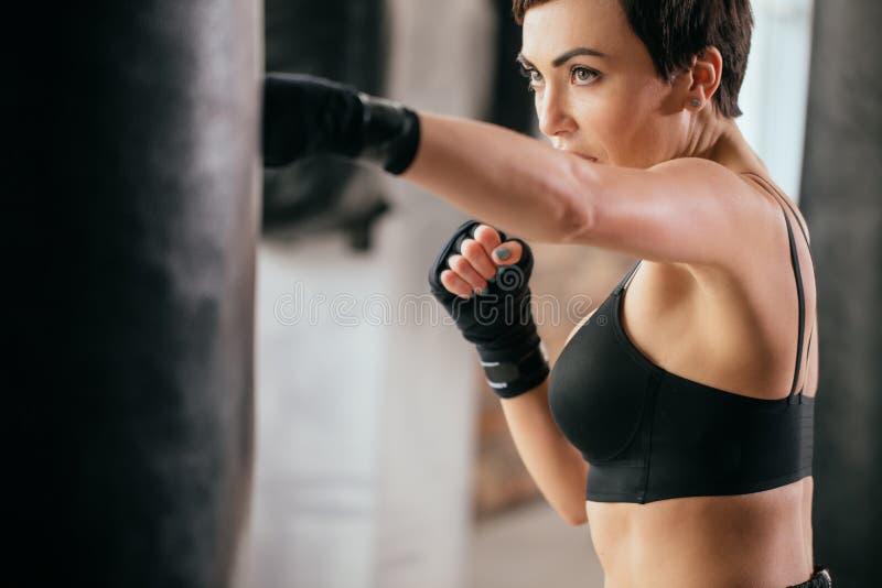 关闭严肃的富有勇气的运动员开发的kickboxing的技能的播种的图象 库存图片