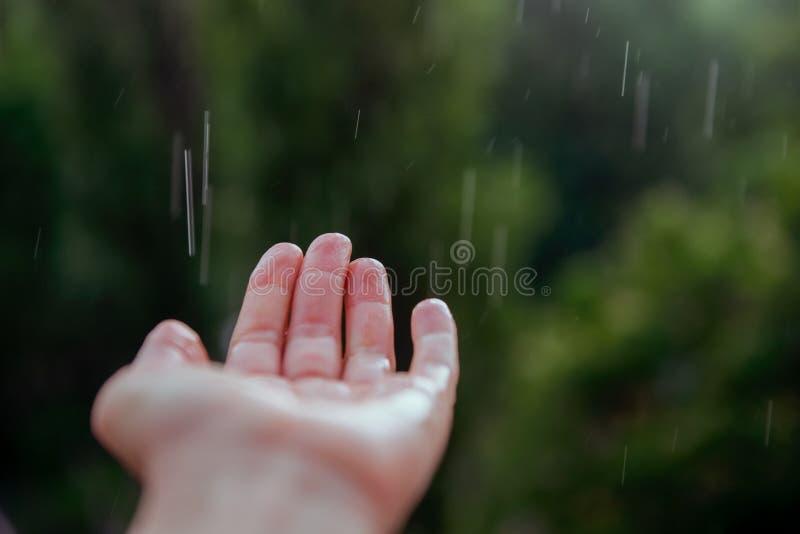 关闭人的手在春天或夏天雨下 选择聚焦 免版税库存图片