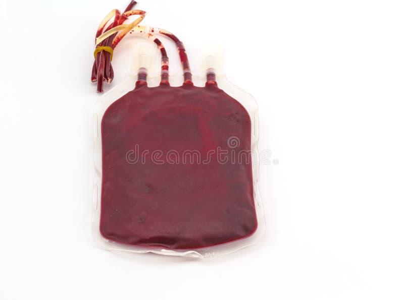 关闭后部袋子血液和等离子小组A和在白色背景隔绝的橡皮泳圈 库存照片