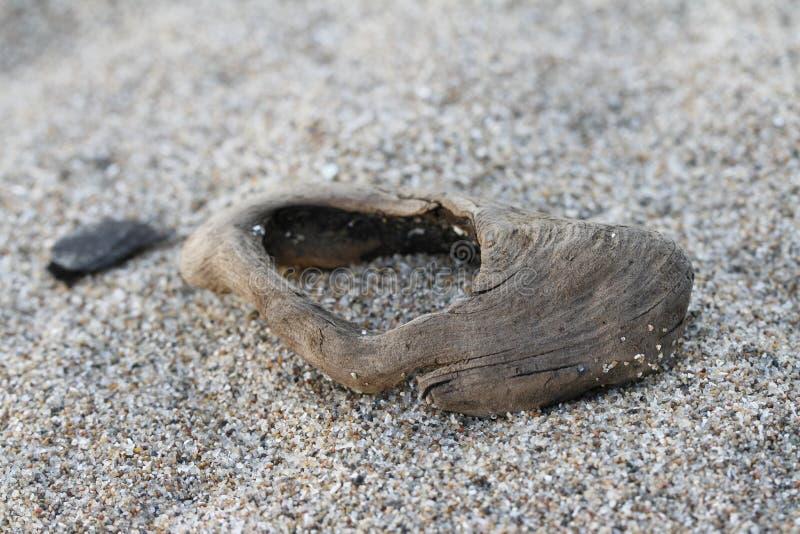 关闭在一个沙滩的一小块漂流木头 免版税库存照片