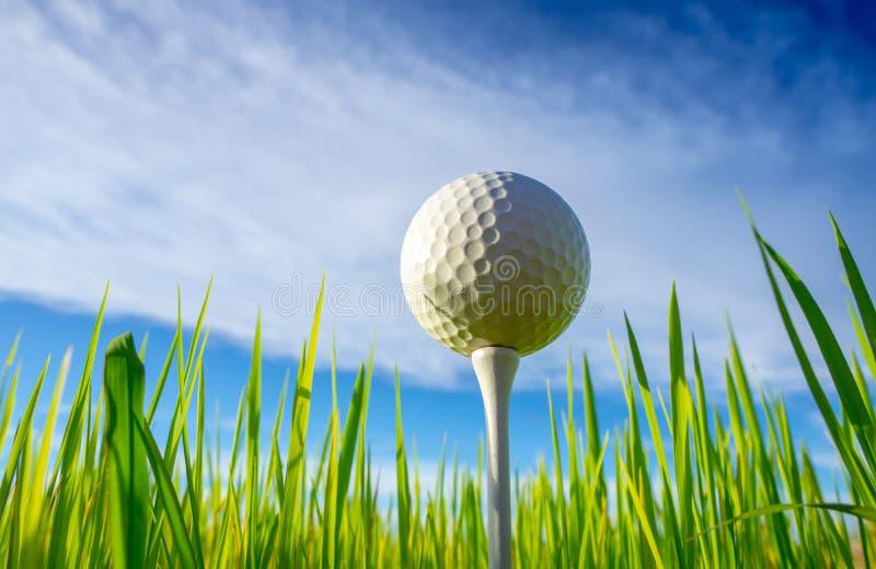关闭在准备好发球区域的钉的高尔夫球使用有天空背景 库存照片