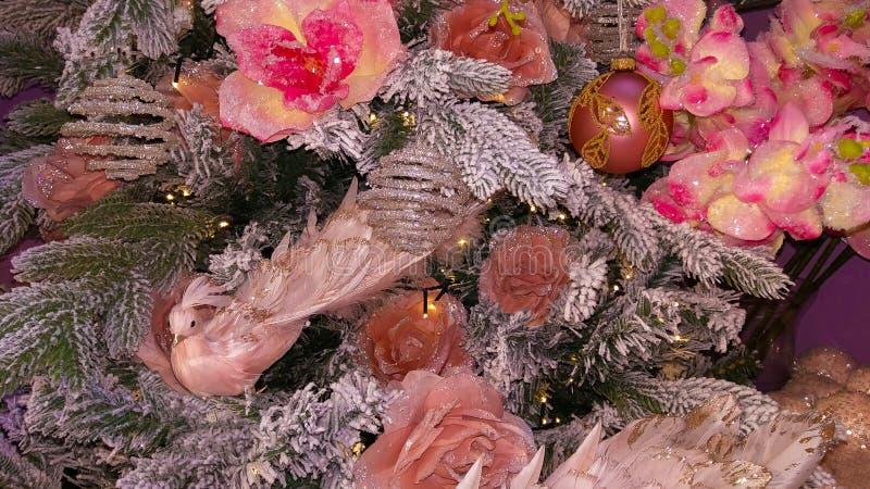 关闭在圣诞树的桃红色孔雀 免版税库存照片