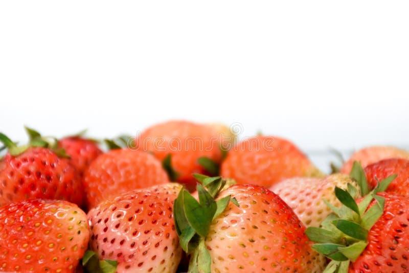 关闭在塑料透明度组装的近的成熟红色草莓,隔绝在白色背景,拷贝空间写道 库存照片