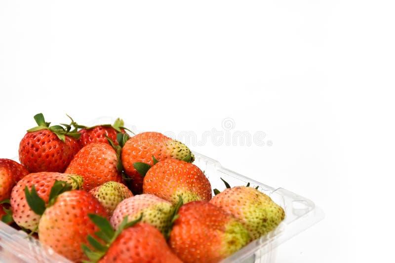 关闭在塑料透明度组装的近的成熟红色草莓,隔绝在白色背景,拷贝空间写道 免版税图库摄影