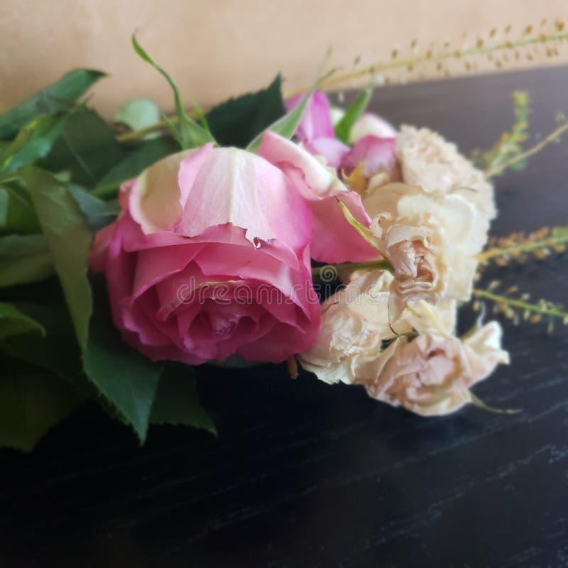 关闭在大桃红色玫瑰,并且小白玫瑰开花说谎在地面上的脚蹬 免版税库存图片
