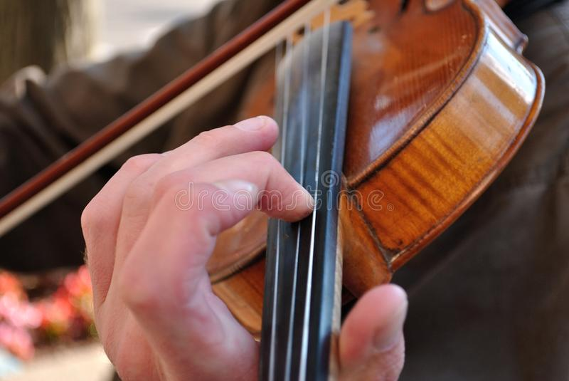 关闭在小提琴的脖子的音乐家的手 库存图片
