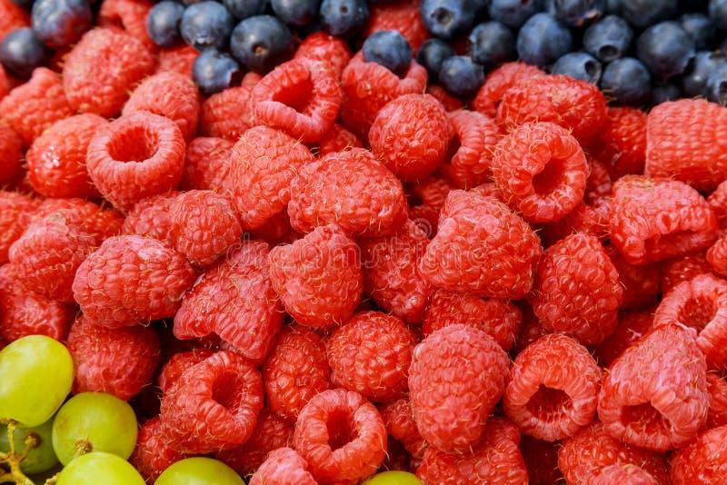关闭在成熟蓝莓和莓的看法 免版税库存照片