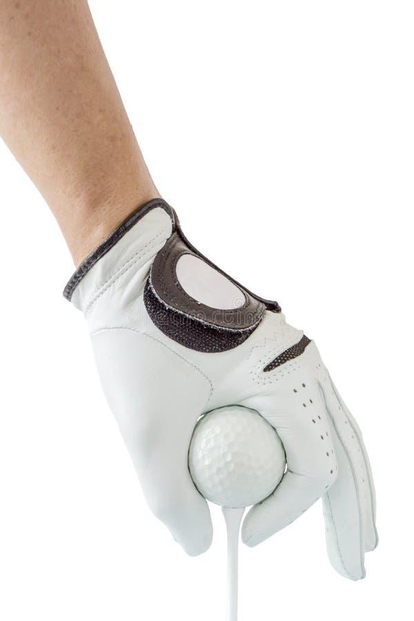 关闭在拿着与发球区域的手套的高尔夫球运动员手高尔夫球 免版税库存照片