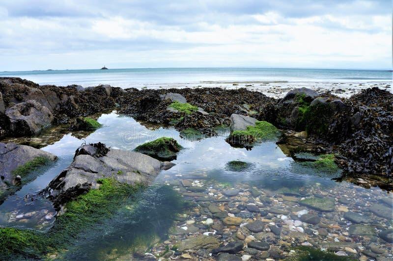 关闭在海滩的小卵石在水中 免版税库存图片