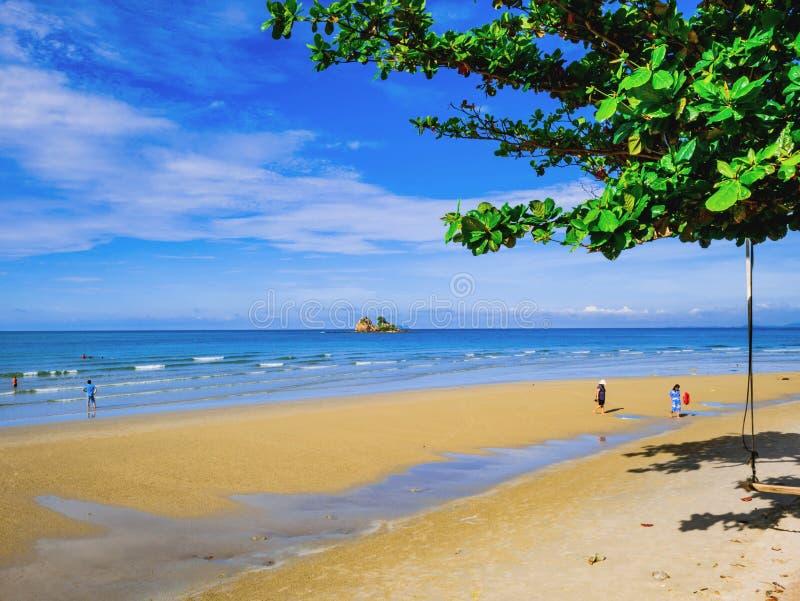 关闭在田园诗海洋旁边的树在假期的美丽的天空的 库存图片