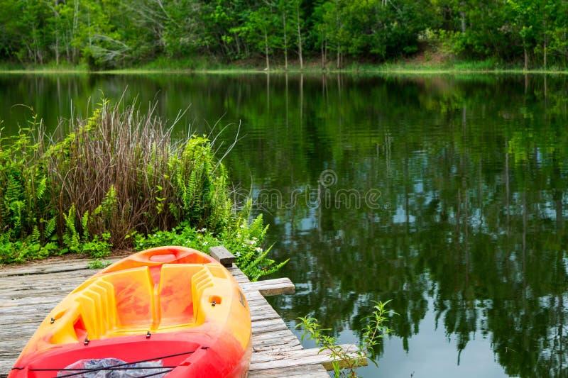 关闭在码头的皮船在大树木丛生的湖旁边 免版税库存照片