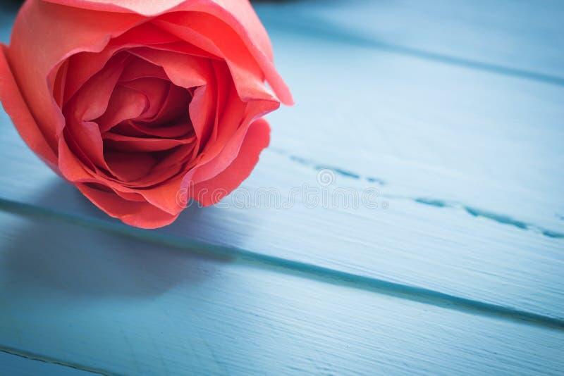 关闭在蓝色木头,葡萄酒定调子的新鲜的玫瑰,有选择性 免版税库存图片