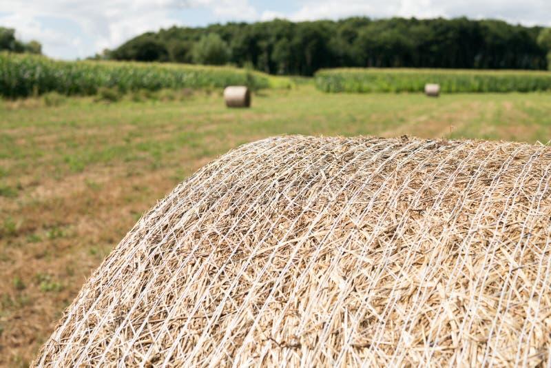关闭在领域干草收获的圆的大包 库存照片