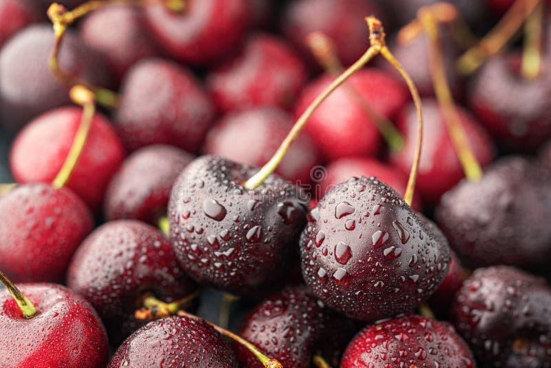 关闭堆与茎的成熟樱桃 新鲜的红色樱桃的大收藏量 成熟樱桃背景 免版税库存图片