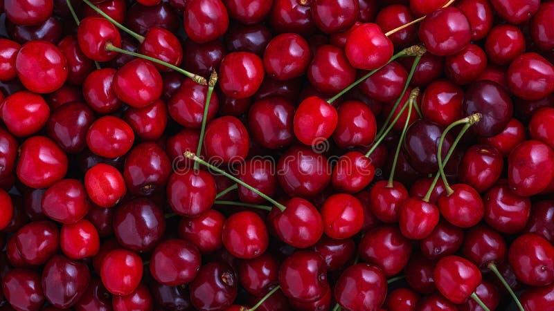 关闭堆与茎的成熟樱桃 新鲜的红色樱桃的大收藏量 成熟樱桃背景 库存照片