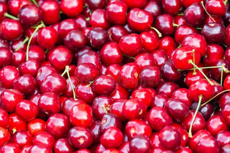 关闭堆与茎的成熟樱桃 新鲜的红色樱桃的大收藏量 成熟背景的樱桃 免版税库存照片