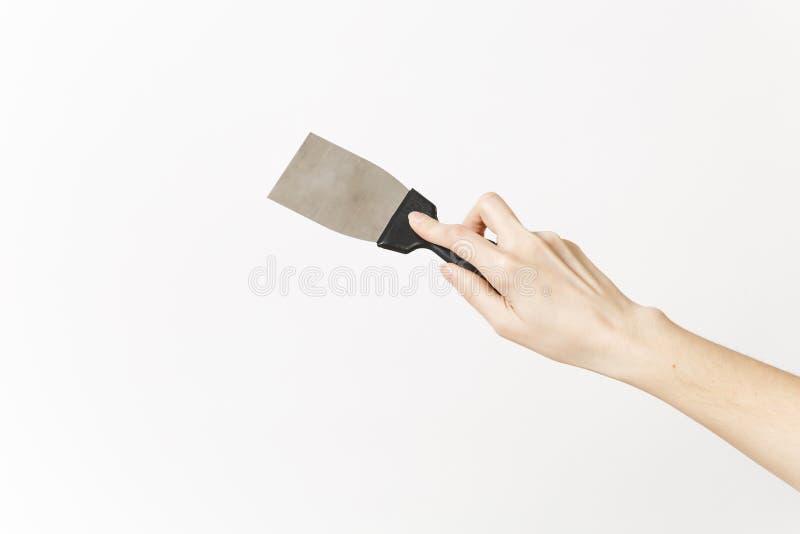 关闭女性在白色背景隔绝的手水平的举行油灰刀 仪器,辅助部件,工具为 库存图片