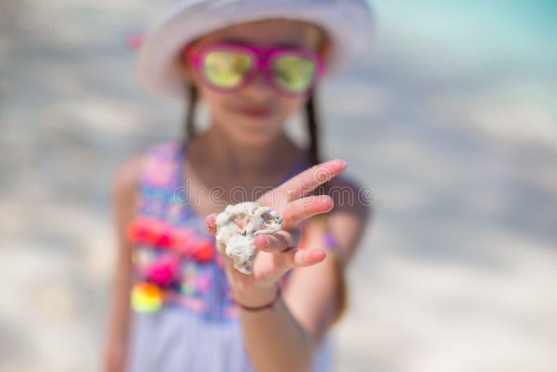 关闭孩子拿着美好的海壳的` s手 库存图片