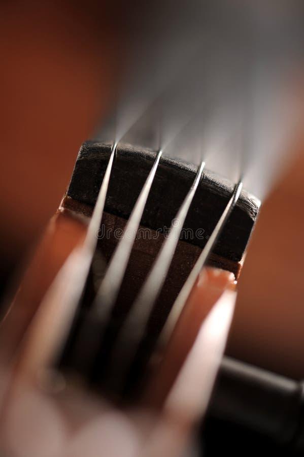 关闭小提琴的射击 库存图片
