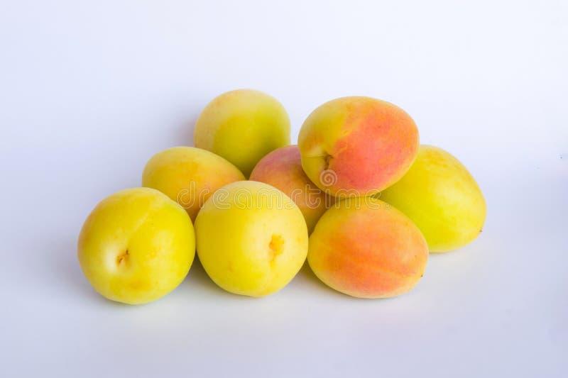 关闭小组在一白色backgrpund的新鲜的有机杏子 库存图片
