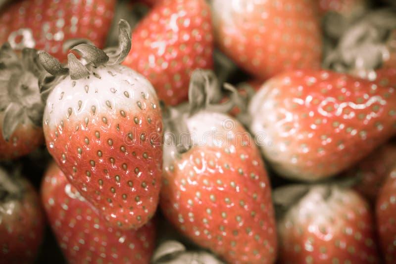 关闭小组新鲜的红色草莓,做用过滤器 免版税库存照片