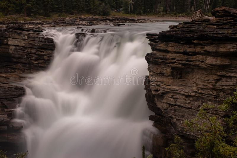 关闭强大阿萨巴斯卡瀑布在班夫国家公园,加拿大,水挤压洪流通过在岩石的一个空白 库存照片