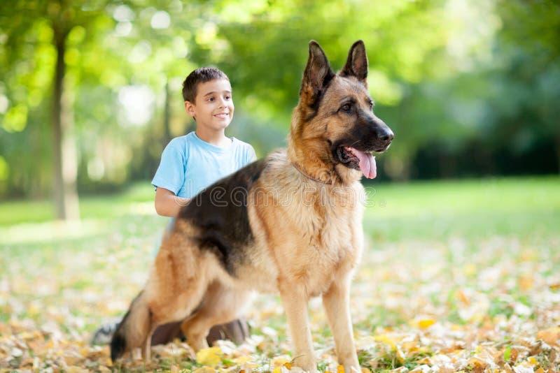 关闭德国牧羊犬狗在公园,男孩在背景中 库存照片