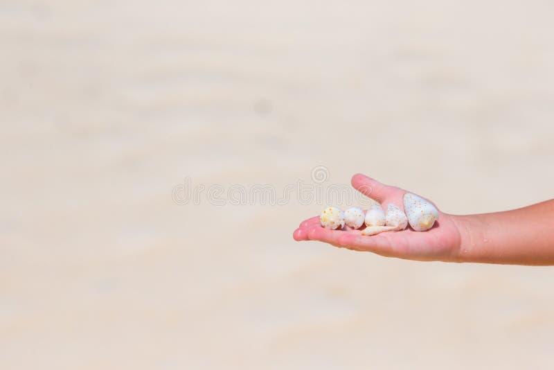 关闭拿着美丽的海的小女孩手 免版税库存照片