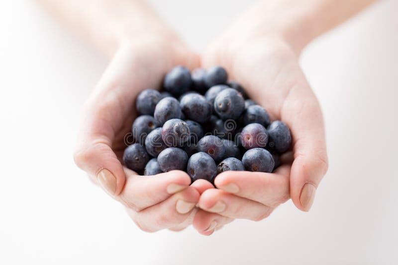 关闭拿着蓝莓的妇女手 库存图片