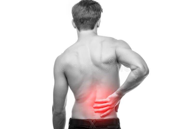 关闭摩擦他痛苦的后面的年轻人身体 镇痛,按摩脊柱治疗者概念 库存照片