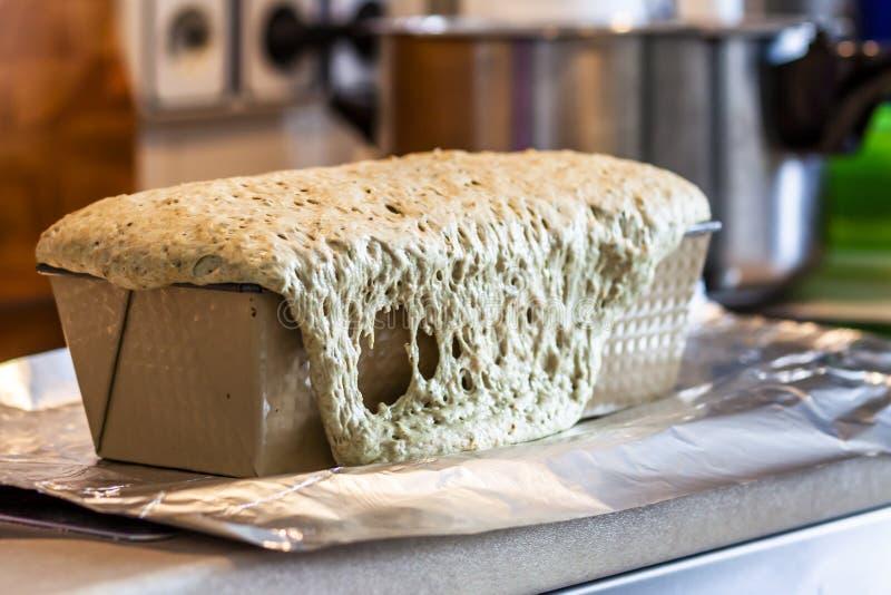 关闭新自已被烘烤的面包 免版税库存照片