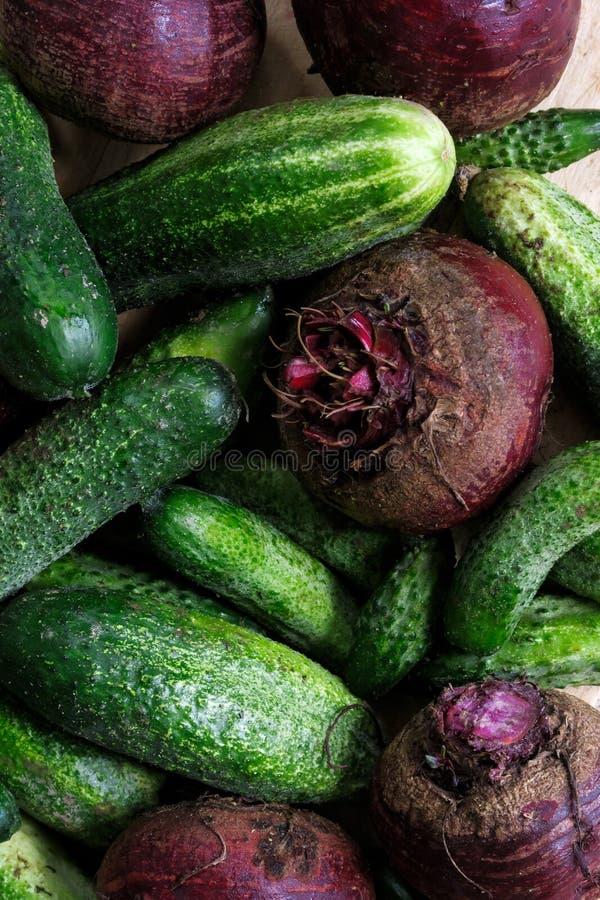 关闭新近地被收获的腌制的黄瓜和甜菜根o 库存图片