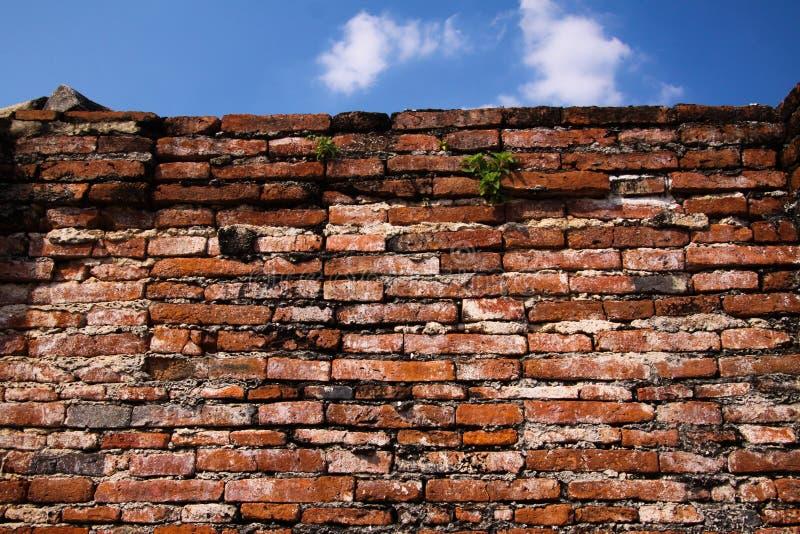 关闭有天空蔚蓝的被隔绝的古老砖墙在阿尤特拉利夫雷斯在曼谷,泰国附近 图库摄影