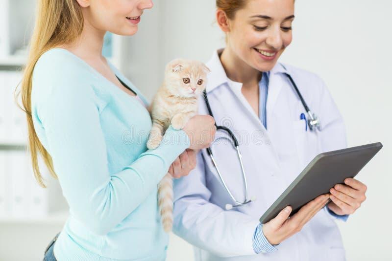 关闭有片剂个人计算机和猫的狩医在诊所 免版税图库摄影