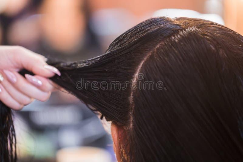 关闭洗的湿头发 发廊,头发恢复的温泉治疗,头发引伸 库存图片