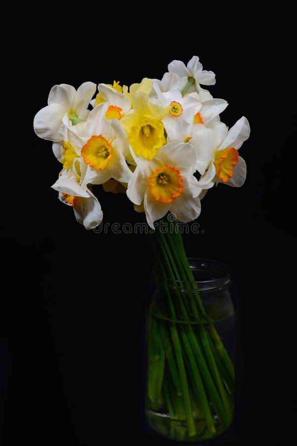 关闭白色和黄色黄水仙花束在一个花瓶的在d 图库摄影