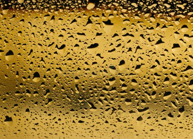 关闭的金黄看法在一个白葡萄酒瓶的结露 免版税库存图片