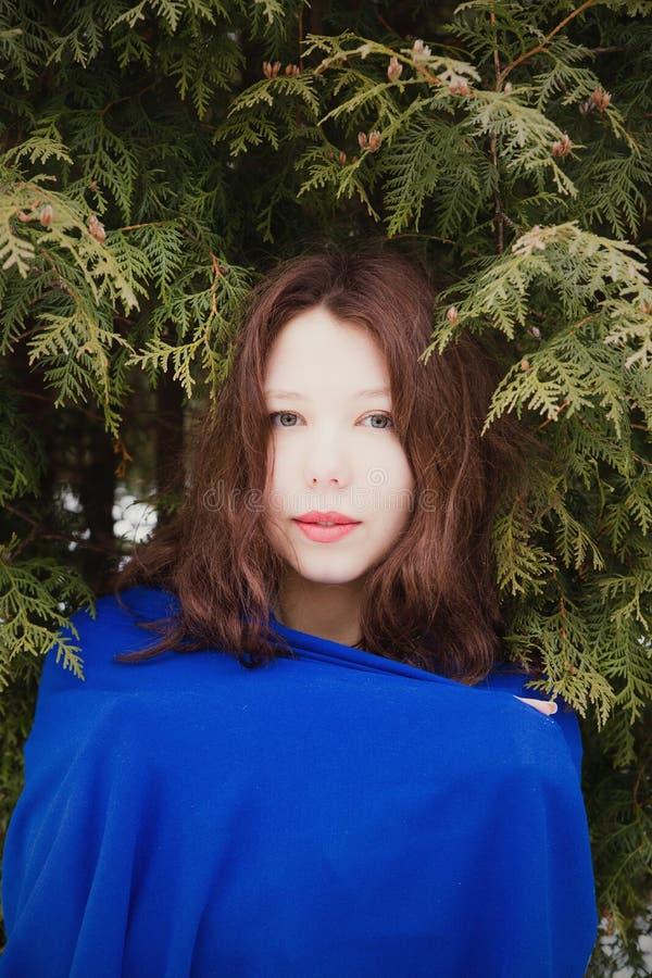 关闭相当冷杉木的快乐的女孩时尚画象  免版税库存照片
