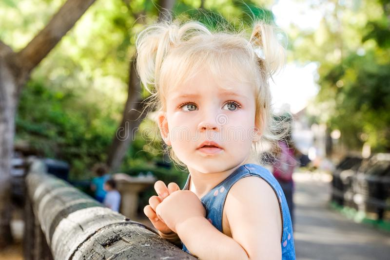 关闭看在旁边和倾斜在木篱芭的逗人喜爱的被迷惑的小blondy小孩女孩画象在动物园或城市里 免版税图库摄影