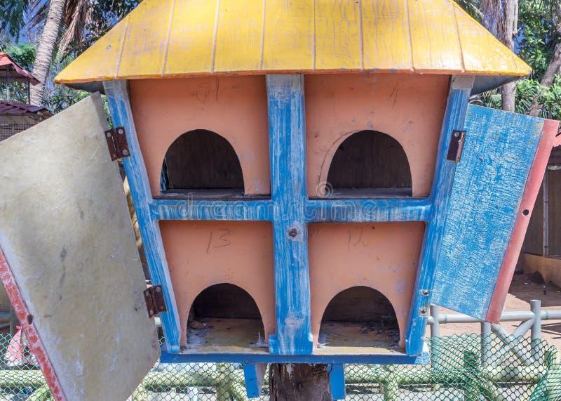 关闭看法木鸟巢, ECR,金奈, Tamilnadu,印度, 2017年1月29日 免版税库存图片