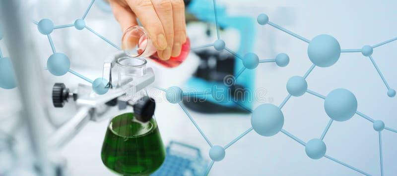 关闭科学家填装的试管在实验室 免版税库存照片