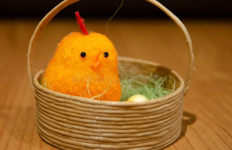 关闭突然上升了在篮子的鸡-复活节概念 库存图片