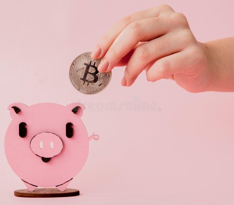 关闭突然上升了投入金bitcoin的妇女的手对桃红色存钱罐,有横幅设计的拷贝空间的,浅景深, 图库摄影